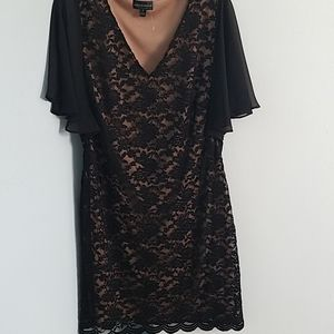 connected apparel lace dress